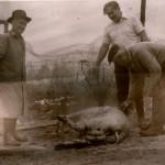 Pig Killing, Hungary, 1979